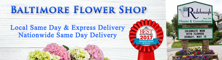 Baltimore Flower Shop
