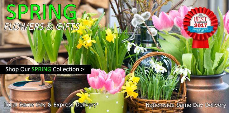 Shop Radebaugh Florist for the best selection of beautiful, farm fresh, Spring Flowers.